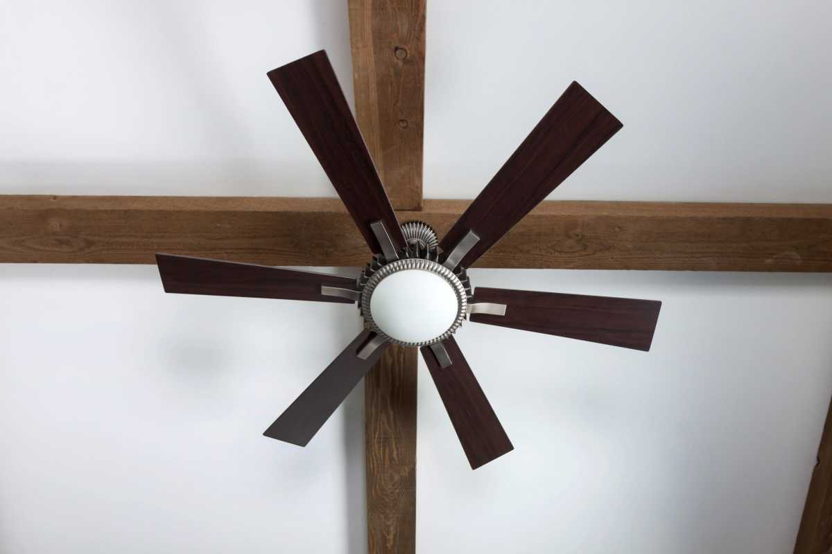 The living room ceiling fan.